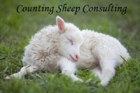 Child Sleep Consultant Certification Online Program - Counting Sheep Consulting